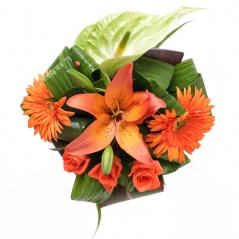 rana | Bouquets orange