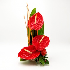composition d'anthuriums rouge