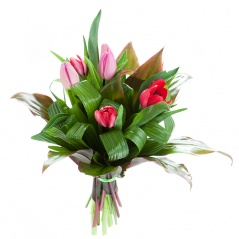 bouquet de 6 tulipes